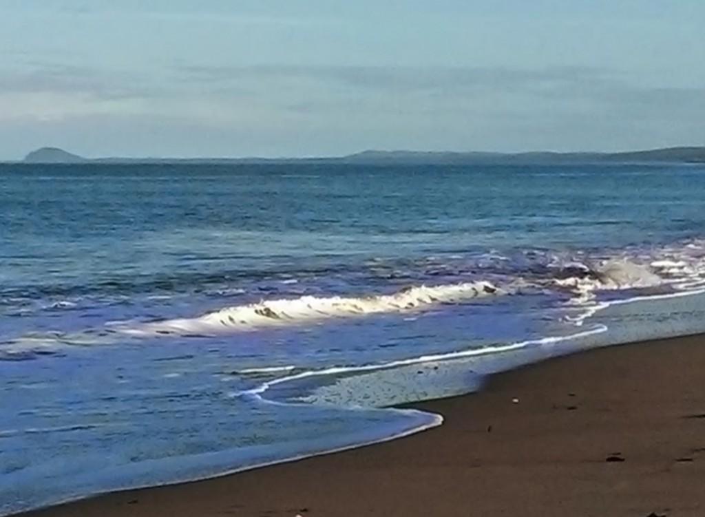 Beach on Haida Gwaii